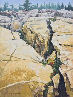 Peter Muzyka Wall Art - Painting - Split Rocks On Maine Coast by Peter Muzyka