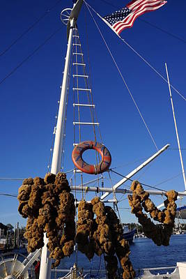 Photograph - Sponge Boat by Laurie Perry