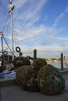 Photograph - Sponge Docks by Laurie Perry