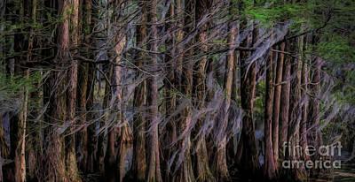 Photograph - Spooky by Paulette Thomas