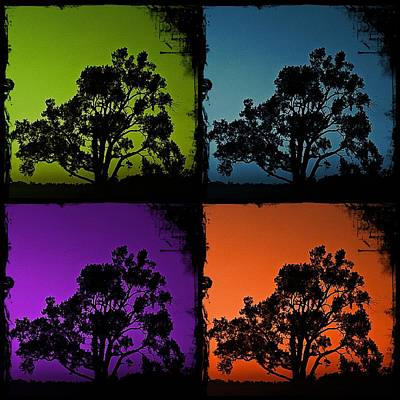 Art Print featuring the photograph Spooky Tree- Collage 1 by KayeCee Spain