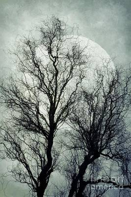 Photograph - Spooky Winter Moon by Patricia Strand