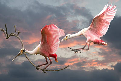 Spoonbill Digital Art - Spoonbill Fantasy #2 by Linda Murdock