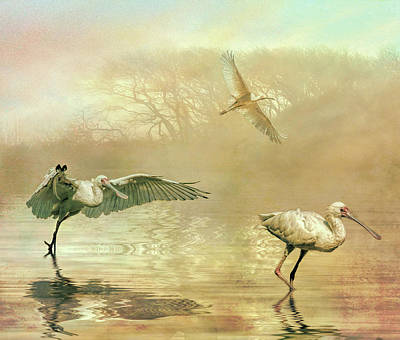 Photograph - Spoonbill Morning by Brian Tarr