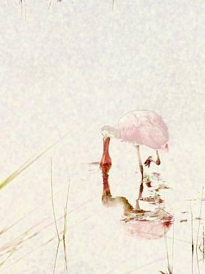 Spoonbill Digital Art - Spoonbill Roseate by Barbara Griswold-Kridner