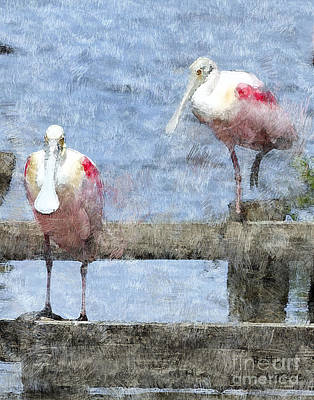 Spoonbill Digital Art - Spoonbills Hanging Out by Betty LaRue