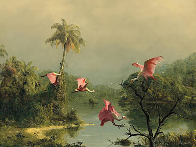 Reproduction Digital Art - Spoonbills In The Mist by Spadecaller