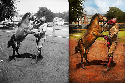 Shetland Ponies Photograph - Sports - Boxing - Below The Belt 1924 - Side By Side by Mike Savad