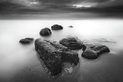 Photograph - Spots by Josh Eral