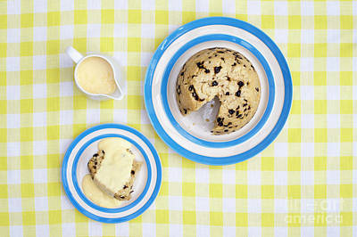 Spotted Dick Photograph - Spotted Dick by Tim Gainey