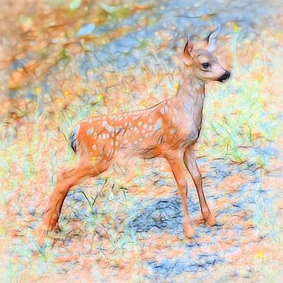 Bounce Digital Art - Spotted Fawn by Patrick Witz