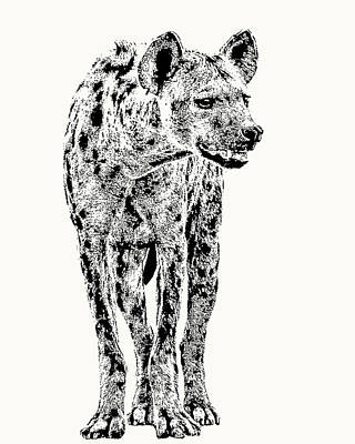 Photograph - Spotted Hyena Full Figure by Scotch Macaskill