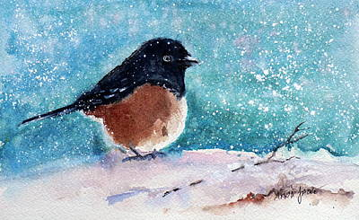Painting - Spotted Towhee All Puffed Up by Anna Jacke