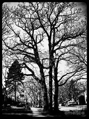 Photograph - Sprawl by Frank J Casella