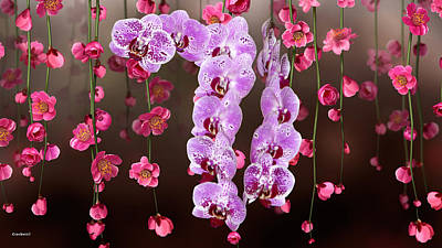 Photograph - Spray Of Orchids Among Hanging Red Flowers by Gary Crockett
