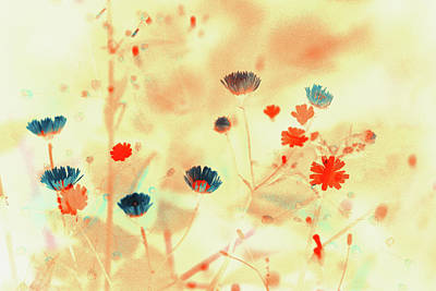 Painting - Sprays Of Flowers  by Bonnie Bruno