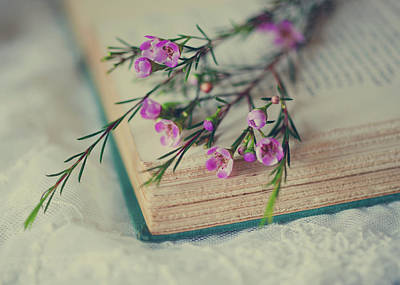 Book Flower Photograph - Sprig by June Marie Sobrito