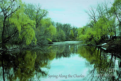 Photograph - Spring Along The Charles  by Rita Brown