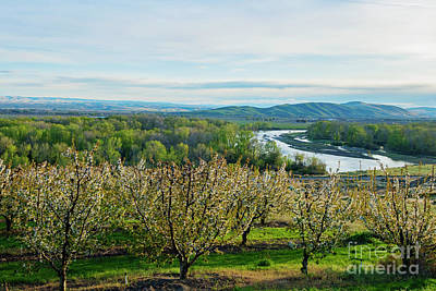 Photograph - Spring Around The Bend by Mike Dawson