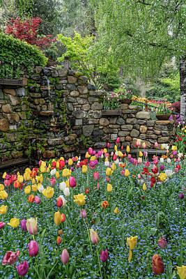 Photograph - Spring At Crystal Hermitage by Janis Knight