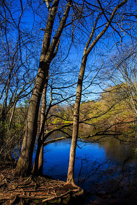 Town Of Color Photograph - Spring At East Rock by Karol Livote