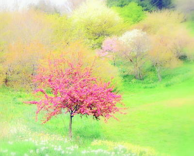 spring at Highland Park  Art Print