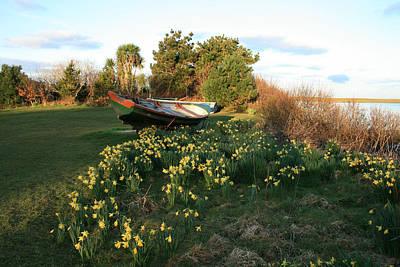 Spring At Renvyle Original by John Quinn