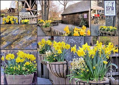 Photograph - Spring At The Plimoth Grist Mill by Janice Drew