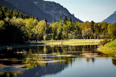 Photograph - Spring At The Refuge by Albert Seger