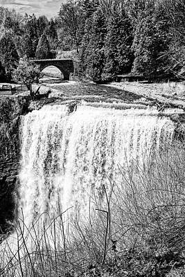 Spring At Webster Falls Original by Phill Doherty