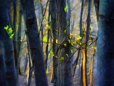 Sun Rays Painting - Spring Awakening In The Forest by Menega Sabidussi