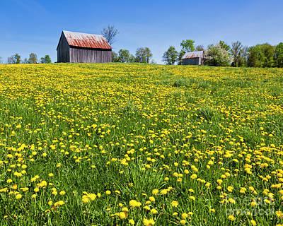 Photograph - Spring Barn Landscape by Alan L Graham