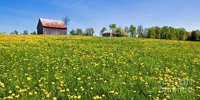 Photograph - Spring Barn Panorama by Alan L Graham
