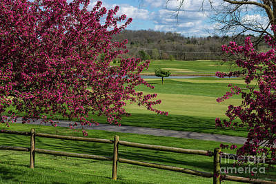 Photograph - Spring Beauty At Rivercut by Jennifer White
