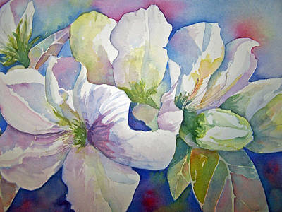 Painting - Spring Beauty by Sandy Collier