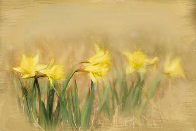 Photograph - Spring Beginnings by Jai Johnson