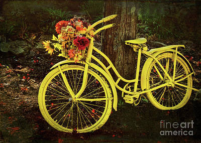 Photograph - Spring Bicycle In Ohio by Janice Rae Pariza