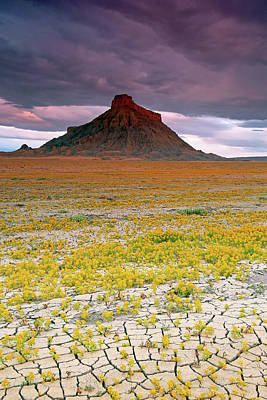 Art Print featuring the photograph Spring Bloom At Factory Butte. by Johnny Adolphson