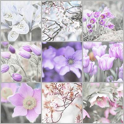 Spring Bloom Collage. Shabby Chic Collection Art Print by Jenny Rainbow