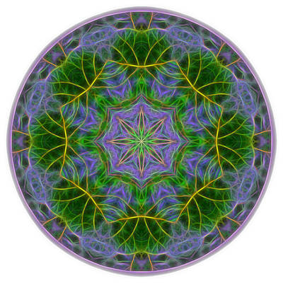 Digital Art - Spring Bloom Colors Mandala by Beth Sawickie