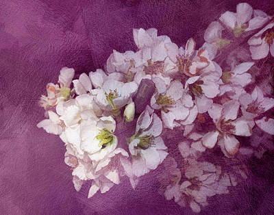 Painting - Spring Blooms by Ann Powell