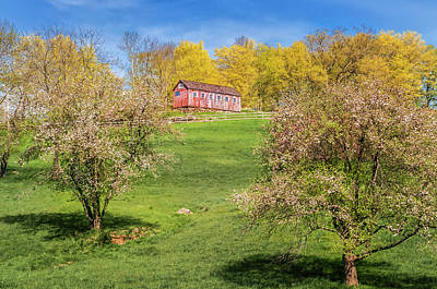 Photograph - Spring Blooms At Greyledge Farm by Expressive Landscapes Fine Art Photography by Thom