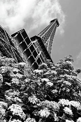 Photograph - Spring Blooms Beneath The Eiffel Tower Paris France Black And White by Shawn O'Brien