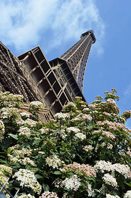 Photograph - Spring Blooms Beneath The Eiffel Tower Paris France by Shawn O'Brien