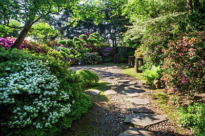 Photograph - Spring Blooms In Japanese Garden 1. Prague by Jenny Rainbow