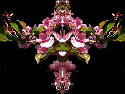Digital Art - Spring Blossom Fractal by Nancy Pauling