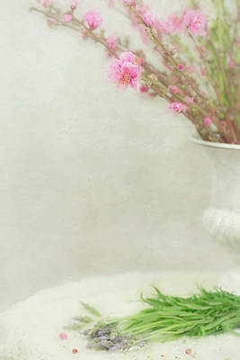 Photograph - Spring Blossoms In White Vase  by Susan Gary