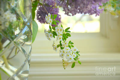 Photograph - Spring Bouquet by Tanya Searcy