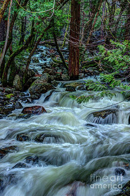Photograph - Spring Bridalveil Creek In Yosemite by Terry Garvin