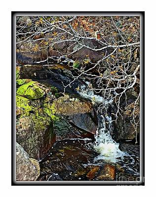 Photograph - Spring Brook by Barbara Griffin